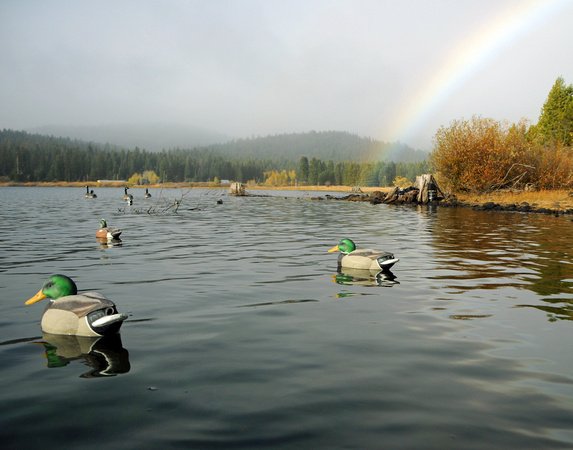 Hyatt Lake rainbow